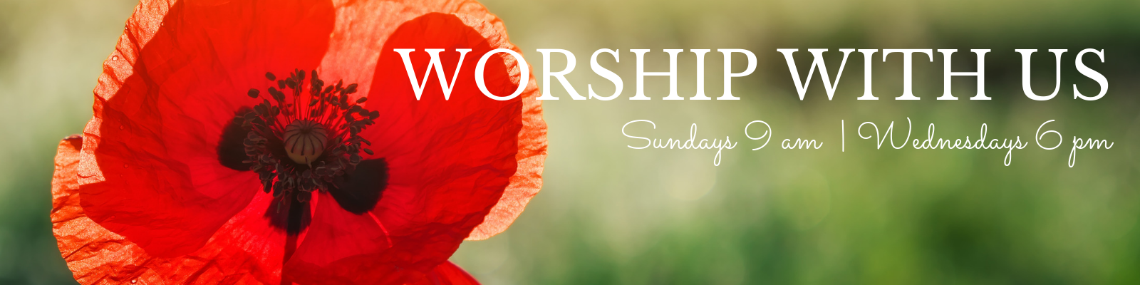 Join us this summer for worship at St John Lutheran Church in Ely, Iowa